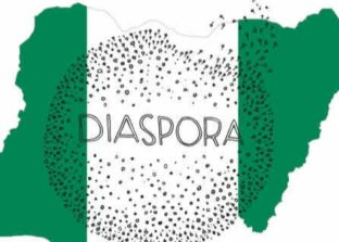 Nigerian flag with the word Diaspora